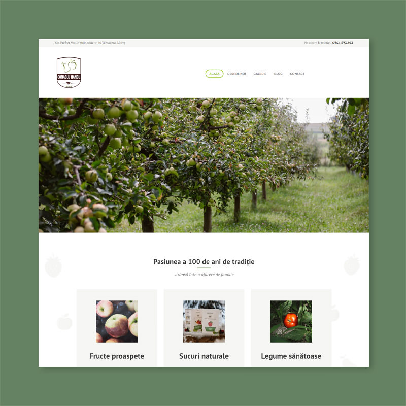 natura juice webstore design ecommerce